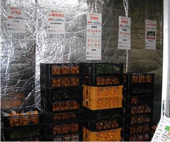 農業総合研究所の倉庫。農家が自ら選んだ農産物がここで仕分けされて全国のスーパーへと運ばれる。http://j-net21.smrj.go.jp/expand/agriculture/entry/20130318101.html