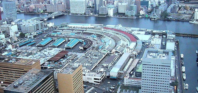 長年にわたり東京および日本の水産物市場を支えてきた築地市場。しかし歴史がある故に情報化を始めとする社会の変化に対応できないという、問題を内包している市場でもあった。