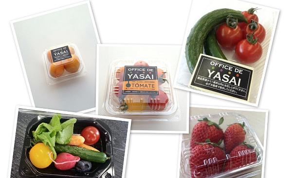 OFFICE DE YASAIで提供される野菜や果物。オフィスでの需要に応え小さめ・少量にしているのが特徴だ。(出典:http://jp.techcrunch.com/2014/04/22/jp20140422office-de-yasai/)