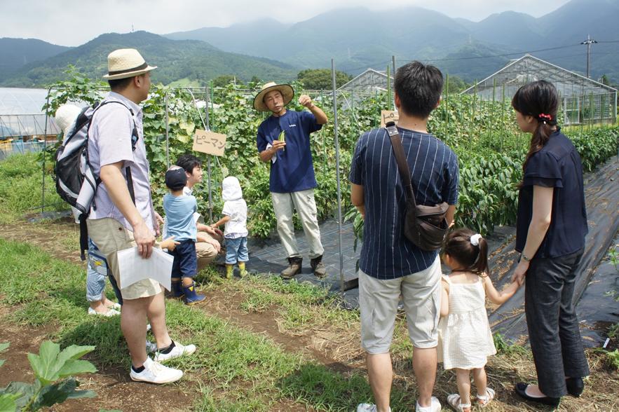 株式会社アグリメディアが展開する「シェア畑」。(参照:http://www.sharebatake.com/farmer/kawasaki-tama/)