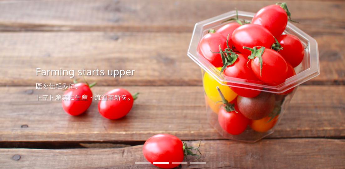 銀座農園の高糖度トマト。種類が多いため普通のスーパーでは売りづらい。多品種少量栽培を行うAgtech(農業ベンチャー/スタートアップ)にとって販路開拓は死活問題だ。(参考:http://www.ginzanouen.jp)